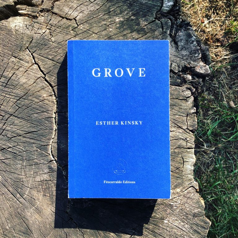 Read more about the article Grove — Esther Kinsky